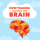 Trauma Infographic - How Trauma Clouds the Brain